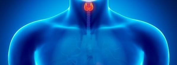 Hipertireoidismo: Veja 8 sinais da doença e previna-se!