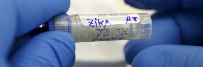 O que é falso e o que é verdadeiro nos boatos sobre zika